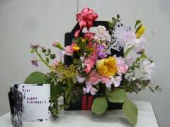 0226arenjiyo2.jpg