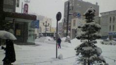 0308yukikuruma2.jpg