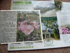 0604barakura1.jpg