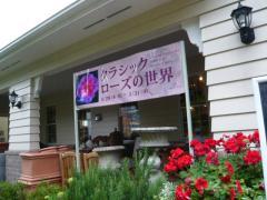 0604barakura3.jpg