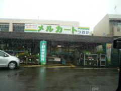 0802yasaiii2.jpg