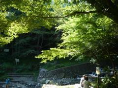 0831kuzuhamizu3.jpg