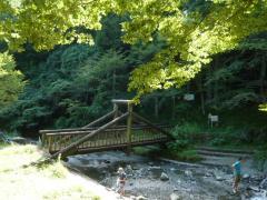 0831kuzuhamizu4.jpg