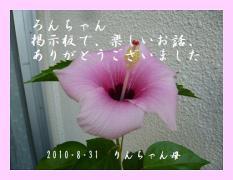 0903ronbbs.jpg