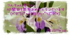 119968_1264976346.jpg