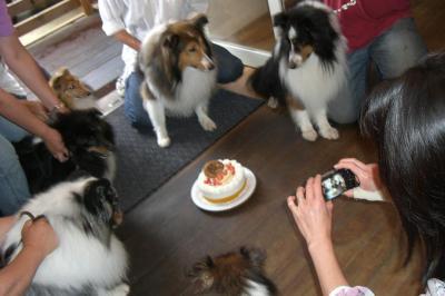 お誕生日合同記念写真
