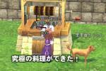 mabinogi_2006_06_13_002.jpg