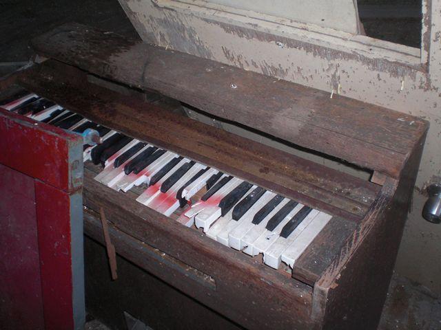 organ_R.jpg