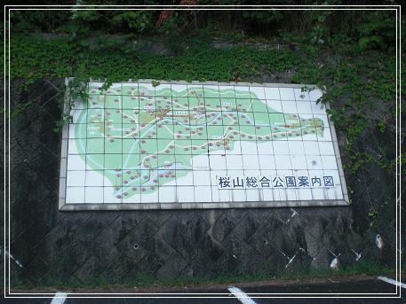 桜山 031-1