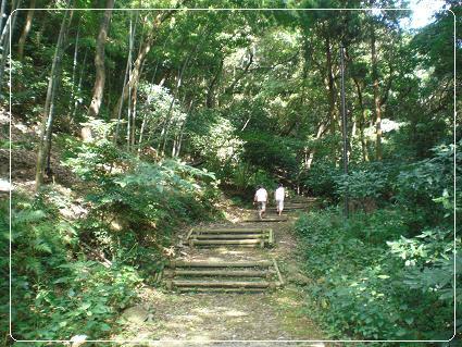 山田緑地 049-1
