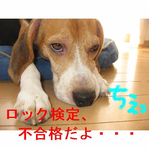 fugoukaku.jpg
