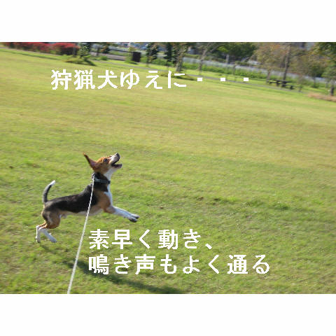 syuryouken.jpg