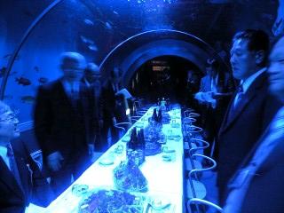 青い海底トンネル