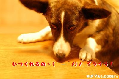 2008121909.jpg
