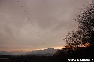 2009011816.jpg