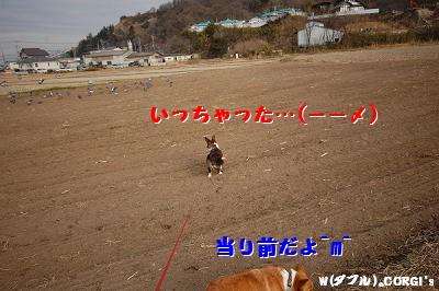 2009012807.jpg