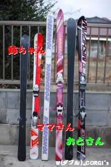 2009030202.jpg