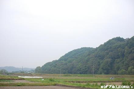 2009051102.jpg
