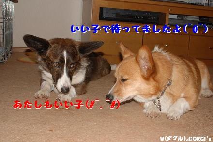 2009051601.jpg