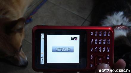 2009060308.jpg