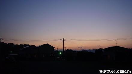 2009061101.jpg