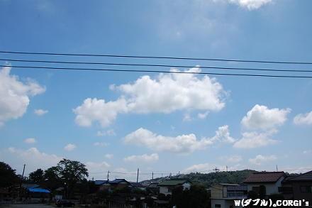 2009081101.jpg