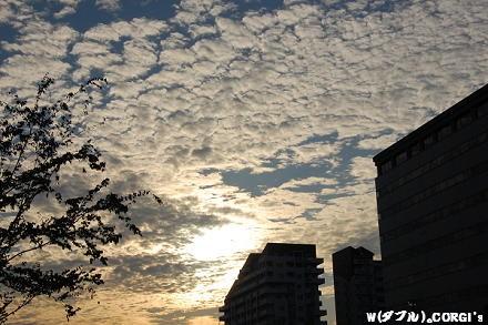 2009082927.jpg