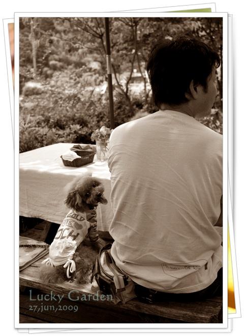 20090627-1.jpg