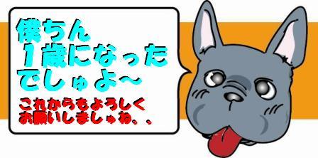 コピー ~ コピー ~ CAK2Y20O