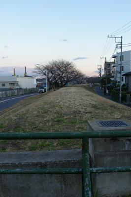 20071230_1.jpg