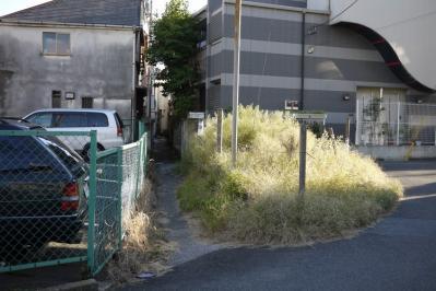 20101011_11.jpg