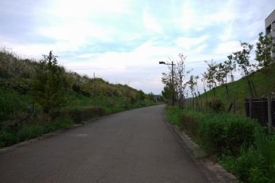 20101023_12.jpg