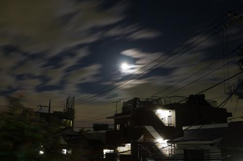 20110320_1.jpg