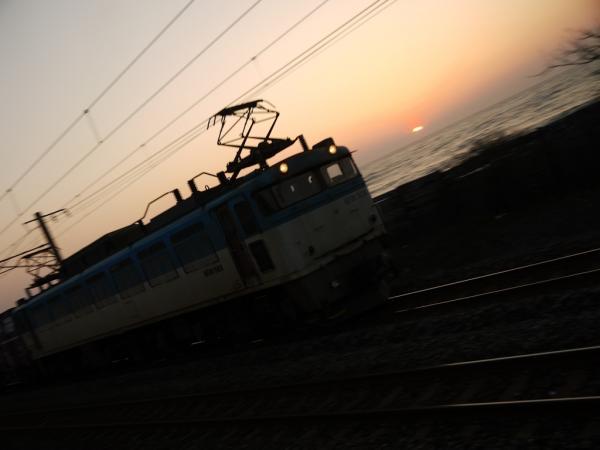 P1110093.jpg