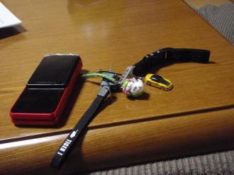 P3070083_convert_20100307202433.jpg