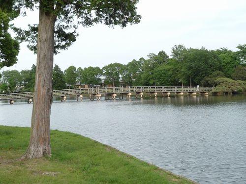 大塚池の橋