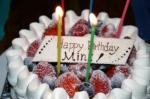 人間のケーキ