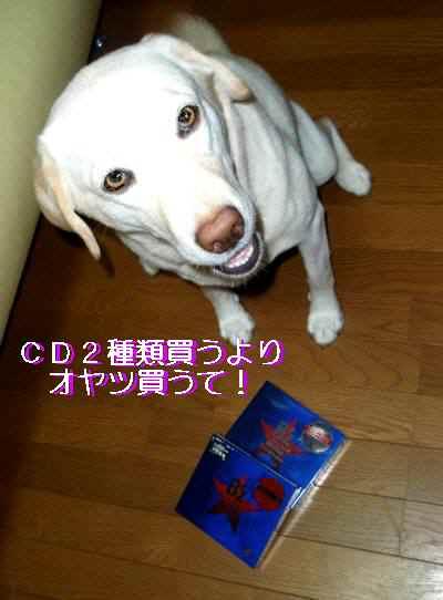 P9170121.jpg