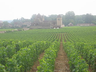 330px-Vineyards_Vougeot.jpg