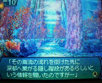 P1003230.jpg