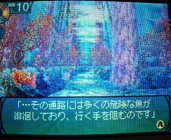 P1003231.jpg
