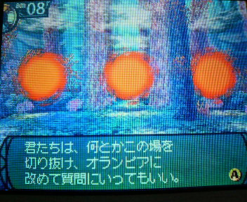 P1003245.jpg