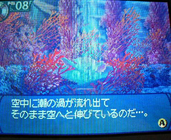 P1003269.jpg