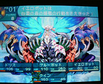 P1004258_20100502114937.jpg