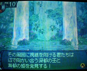 P1004896.jpg