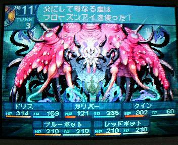 P1004988_20100516151902.jpg