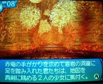 P1005259_20100523155706.jpg
