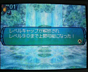 P1005392_20100523133521.jpg