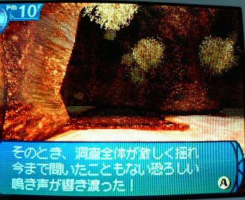 P1005419.jpg