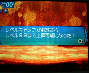 P1005448.jpg